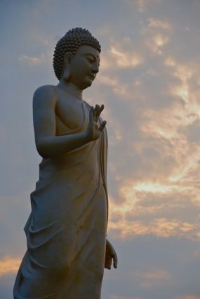 NTI Buddha